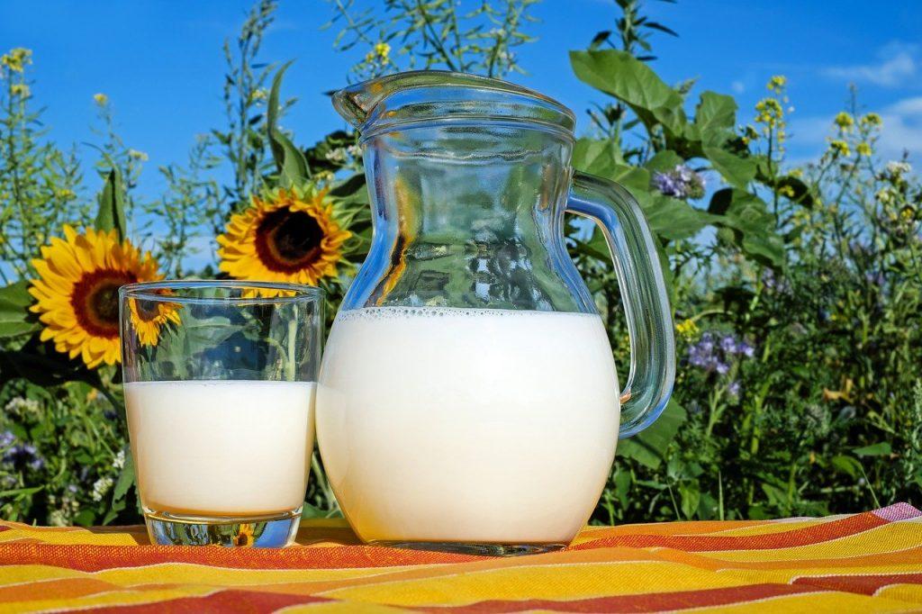 World Milk Day